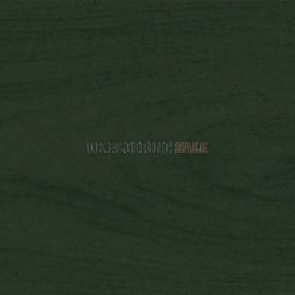 Vita Decor Tint Forest Green