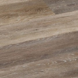 Indian Chalk Oak