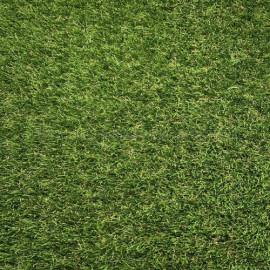 Artificial Grass - Marseille